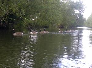 Oxford-20120701-00255